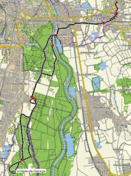 Track Wildpferde Stadtwald Augsburg