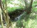 Schmutter 3 km nach der Quelle